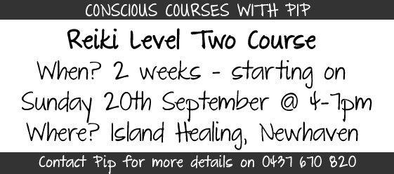 Conscious Courses With Pip
